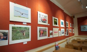 Women in Photography exhibition
