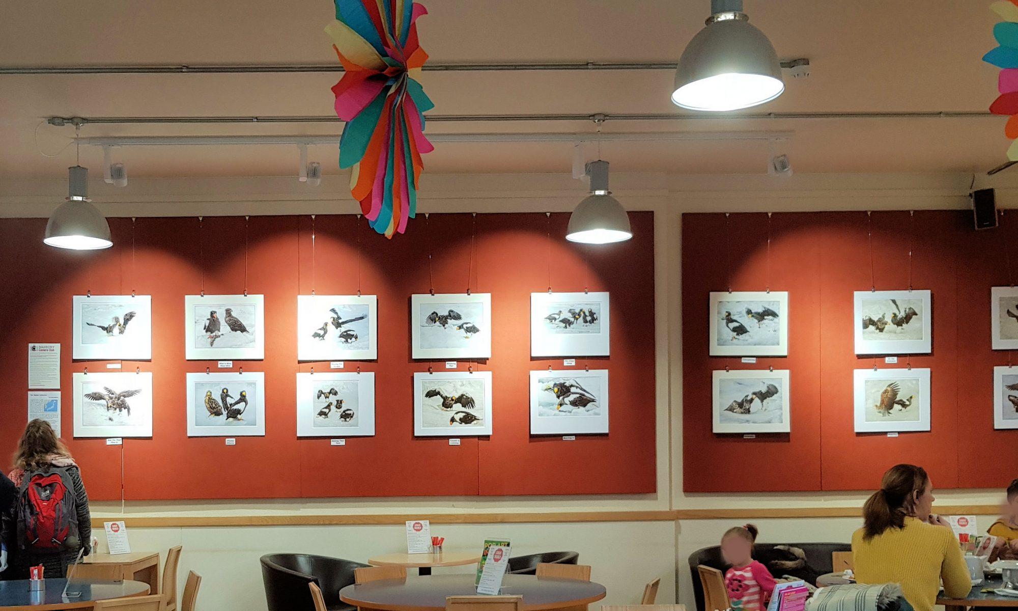 Chris Baldwin's exhibition